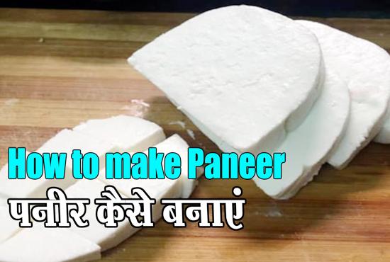 homemade-paneer